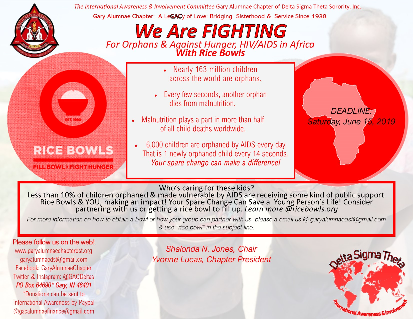 International Awareness Project for Africa